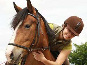 poney aventure