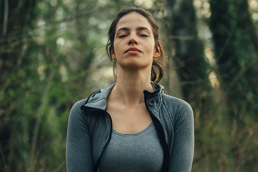 Méditation - Des Branches et Vous