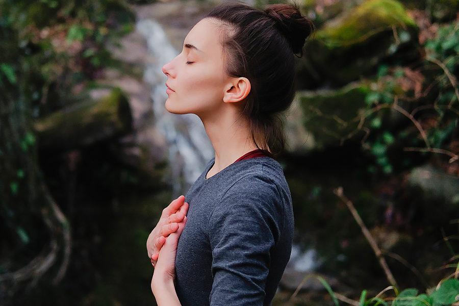 Méditation et Philosophie - Des Branches et Vous