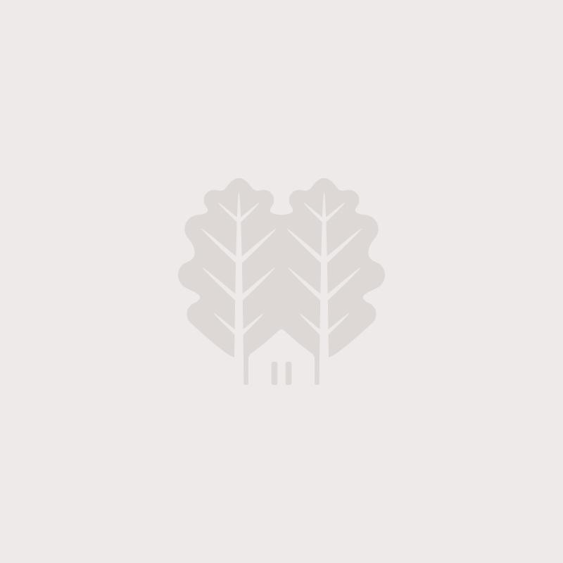 Default Image - Des Branches et Vous